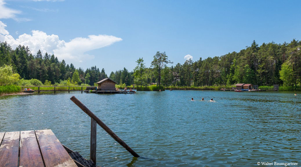Wheelchair-Tours-Wheelchair-Völs-Pond-Summer