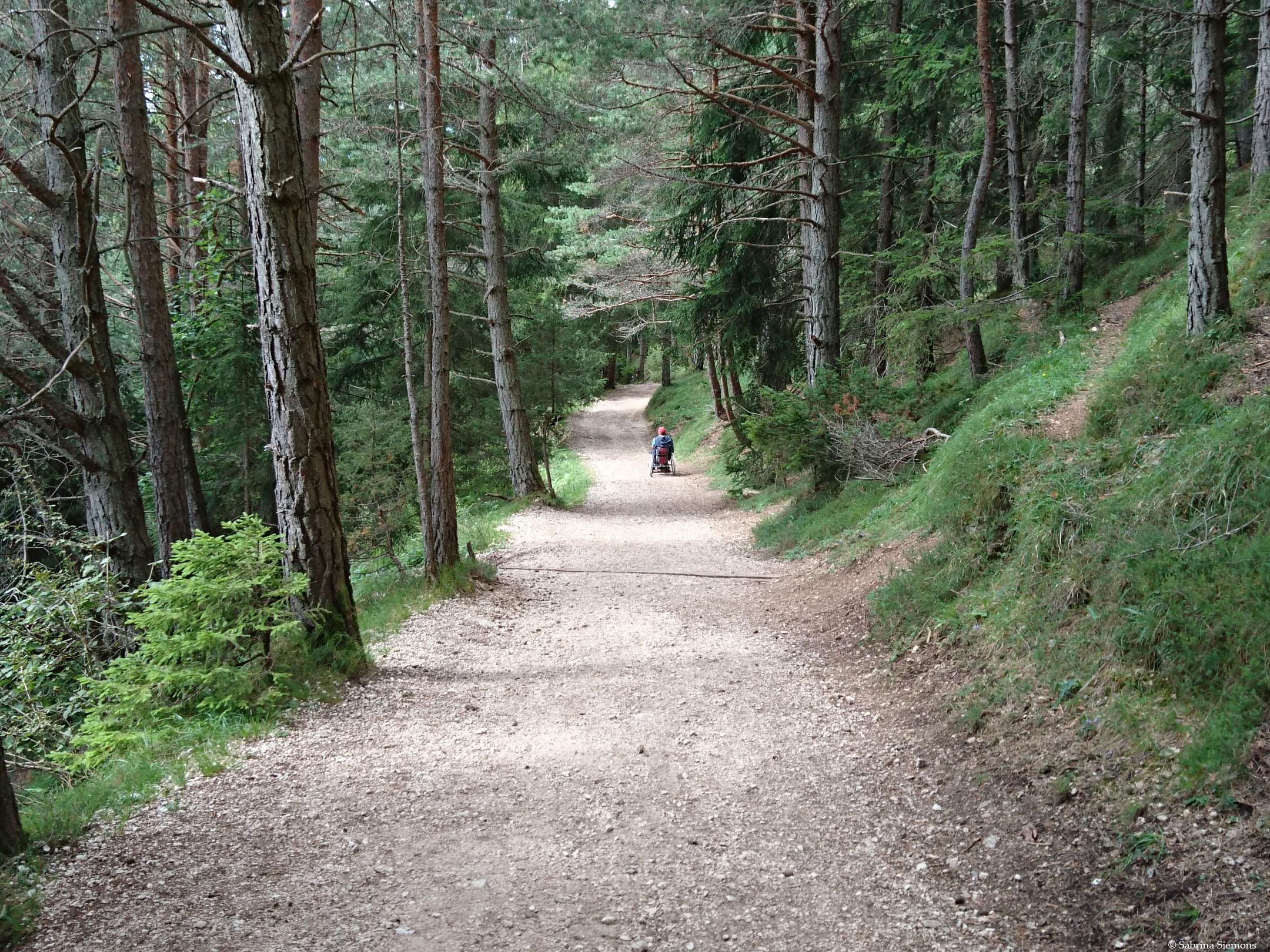 Wheelchair-Tours-Wheelchair-Hofer-Alpl-letzes-Teilstueck-vor-Tuffalm