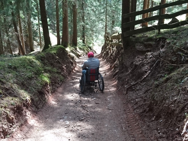 Wheelchair-Tours-Rollstuhl-Moarmühle-Wanderweg2-Baumi-1