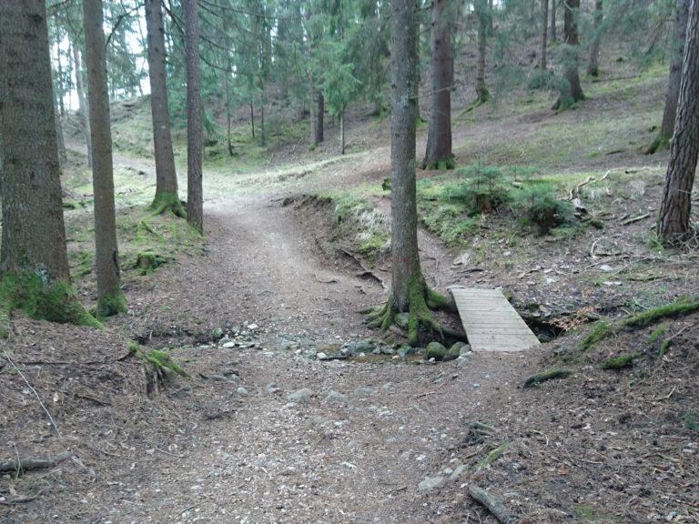 Wheelchair-Tours-Rollstuhl-Moarmühle-Wanderweg2-Bruecke-1.