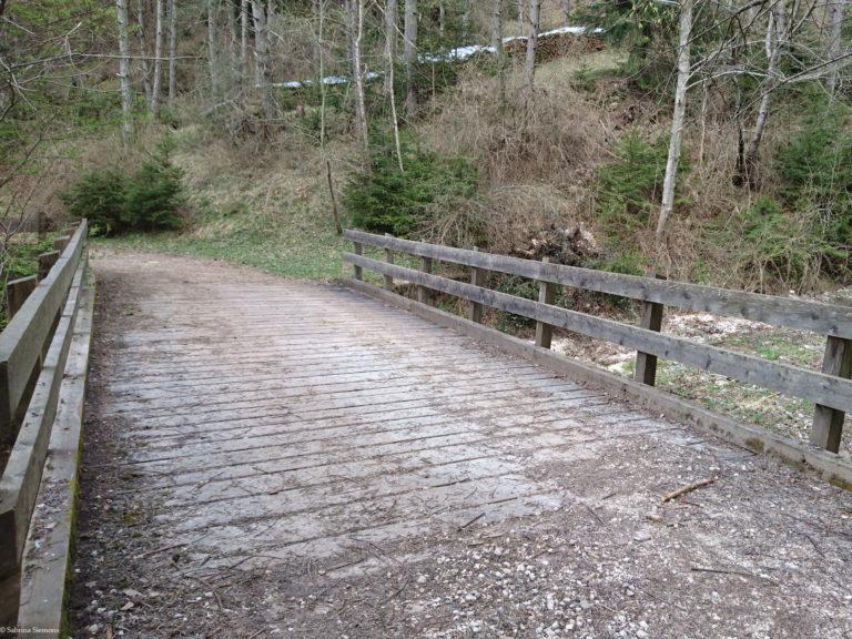 Wheelchair-Tours-Rollstuhl-Moarmühle-Wanderweg2-Bruecke-Moarmuehle-1