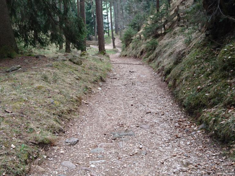 Wheelchair-Tours-Rollstuhl-Moarmühle-Wanderweg2-nach-Bruecke-1