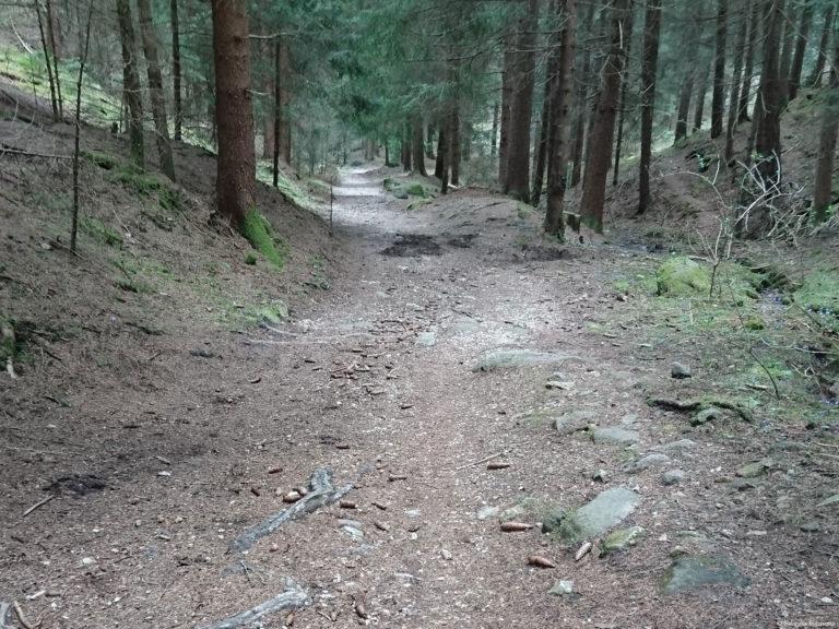 Wheelchair-Tours-Rollstuhl-Moarmühle-Wanderweg2-zwischen-den-Fluessen-1
