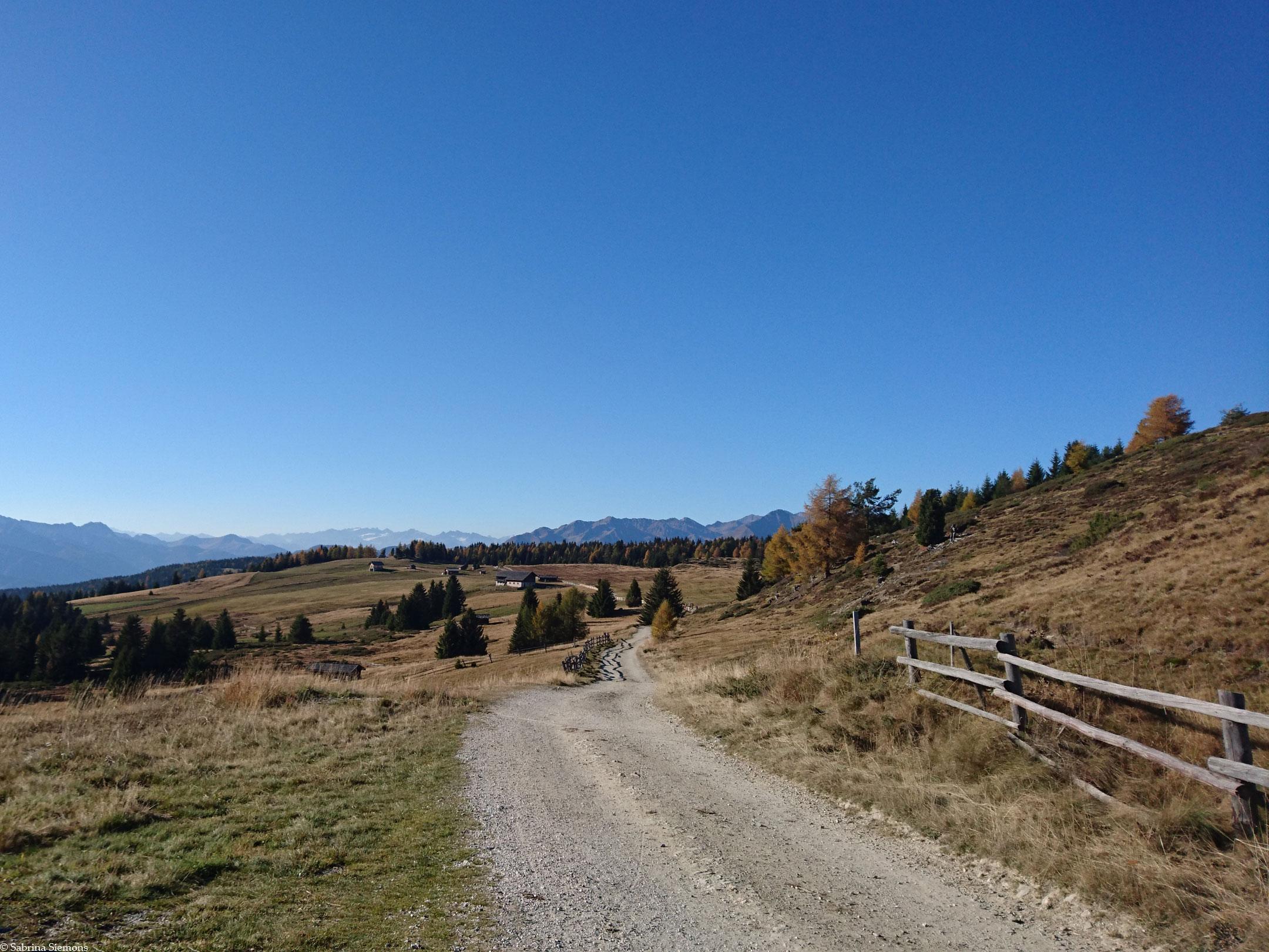 Wheelchair-Tours-Wheelchair-Rodenecker-Alm-Ausblick-Hochfläche-Aussicht