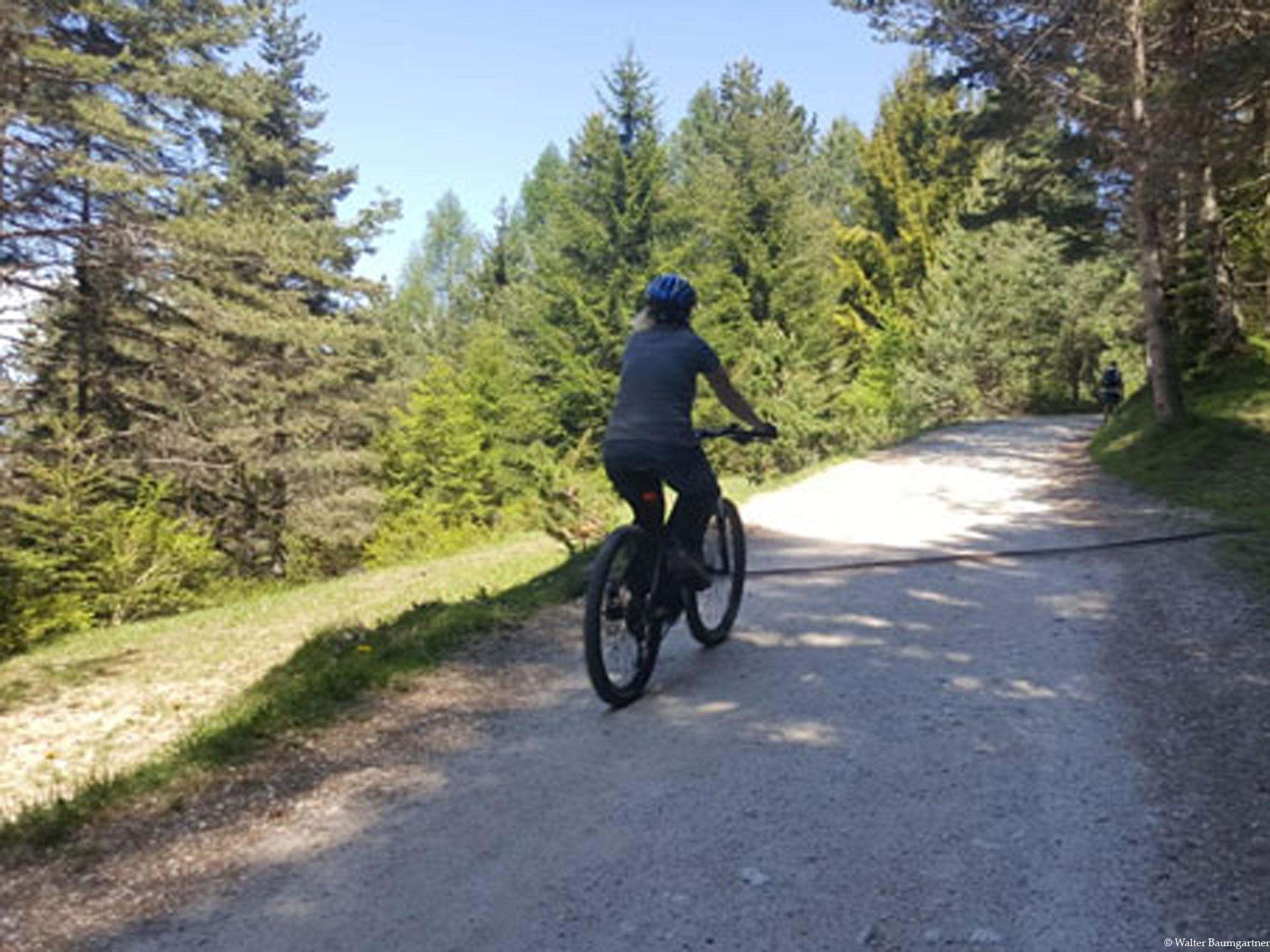 Wheelchair Tours Wheelchair Tuffalm Trail