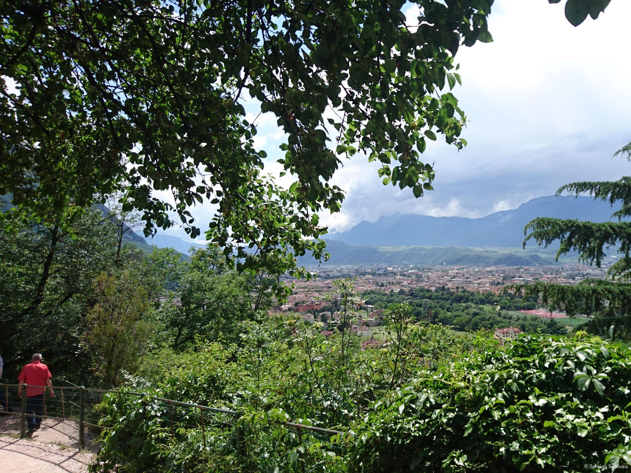 Wheelchair-Tours-Wheelchair-Walter-Promenade-View-Bolzano-Tree-Walk