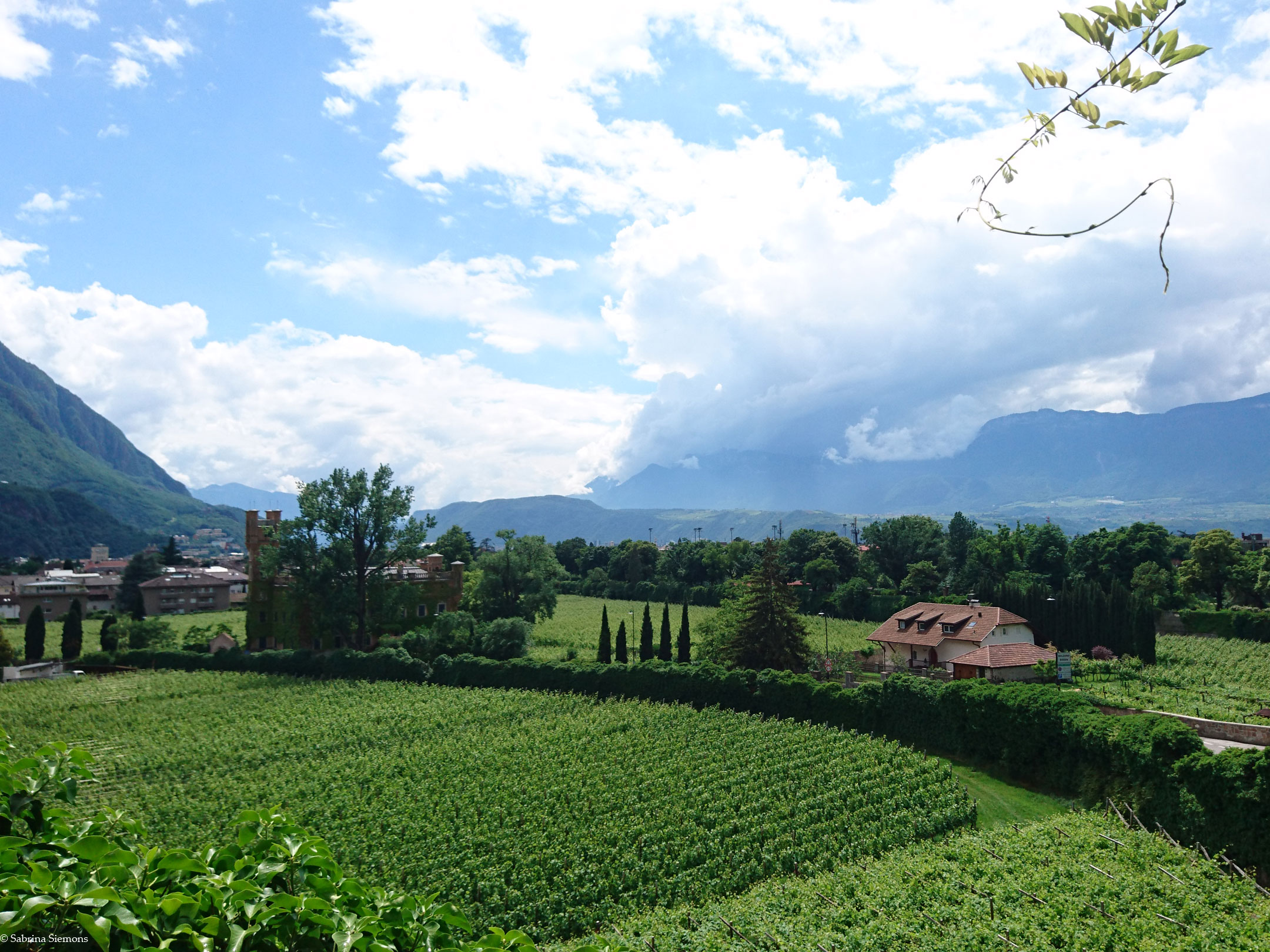 Wheelchair-Tours-Wheelchair-Walter-Promenade-View-Bolzano