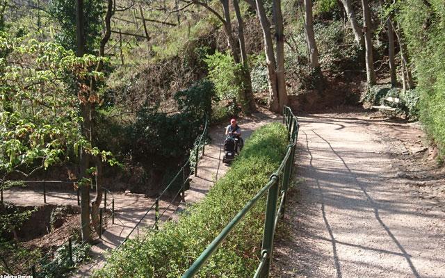 Wheelchair-Tours-Rollstuhl-Eisacktal-Gunschna-Promenade-Wegfuehrung-mit-Baumi