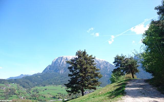 Wheelchair-Tours-Wheelchair-Eisacktal-Schnaggenkreuz-Weg-von-Proesels-zum-Schnaggenkreuz