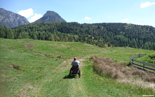 Wheelchair-Tours-Wheelchair-Eisacktal-Schnaggenkreuz-ueber-die-wiese