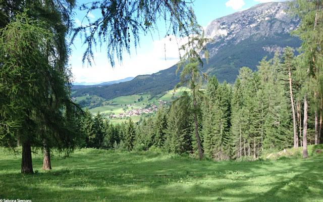 Wheelchair-Tours-Wheelchair-Eisacktal-Schoenblick-Schnaggenkreuz-Ausblick-auf-Ums