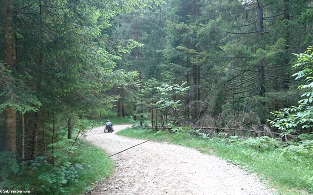 Tour in sedia a rotelle-Wheelchair-Eisacktal-Schoenblick-Schnaggenkreuz-Weg-Richtung-Ums-letzter-Teil-2