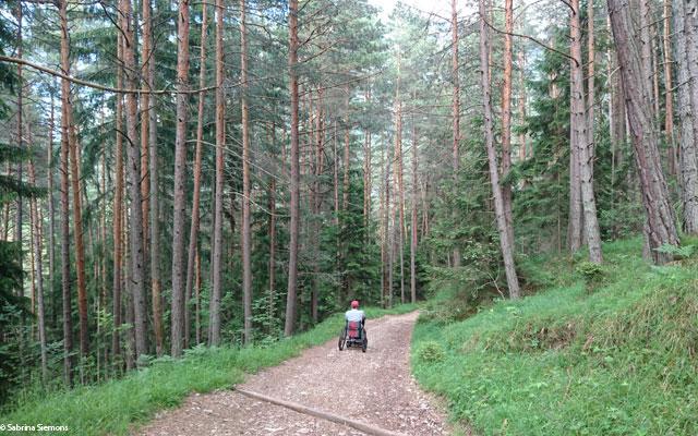Wheelchair-Tours-Wheelchair-Eisacktal-Schoenblick-Schnaggenkreuz-Weg-Richtung-Ums-letzter-Teil