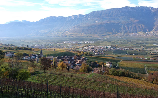 In the south of South Tyrol, the Adige river valley widens, and the landscape becomes gentler, characterized by vineyards and orchards. Palm trees, cypress and citrus trees  grow and blossom there too, like in a huge garden.