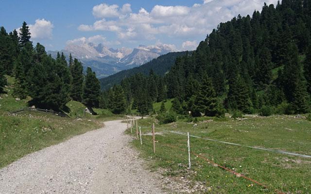 Escursioni in sedia a rotelle-Seiser-Alm-Mahlknechthuette-Heimweg-Saltria