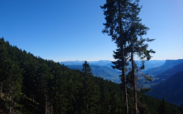 Wheelchair-Tours_Rollstuhl-Touren-Meran-Umgebung-Virgiljoch-Ausblick-Etschtal-und-Dolomiten