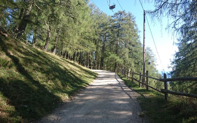Wheelchair-Tours_Rollstuhl-Touren-Meran-Umgebung-Virgiljoch-durch-Laerchenwald-unter-dem-Lift-ohne-Baumi