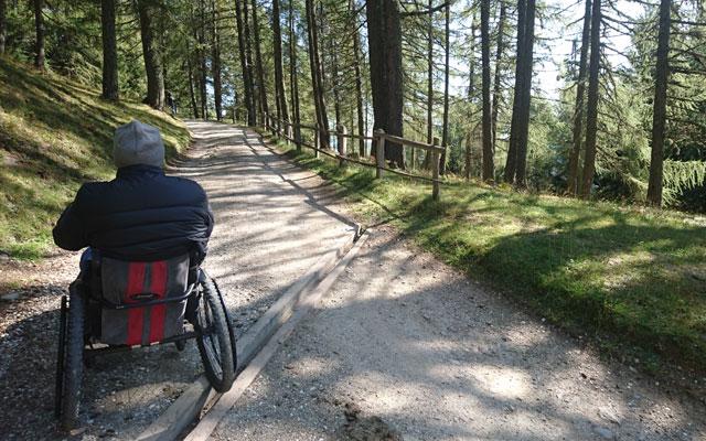Wheelchair-Tours_Rollstuhl-Touren-Meran-Umgebung-Virgiljoch-durch-Laerchenwald-unter-dem-Lift
