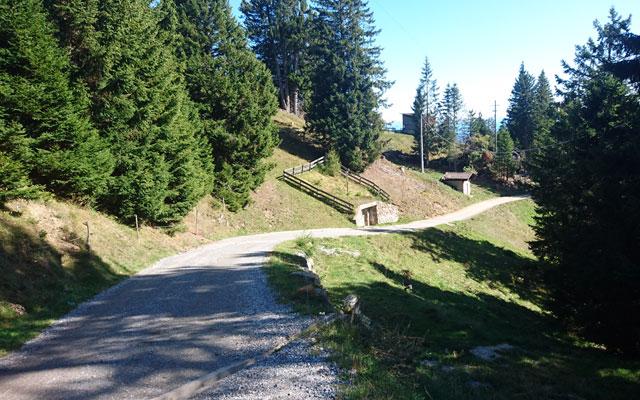 Wheelchair-Tours_Rollstuhl-Touren-Meran-Umgebung-Virgiljoch-steile-Passage