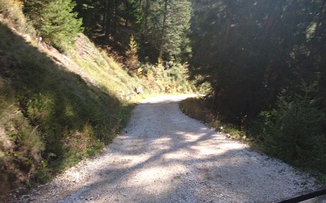 Wheelchair_Tours_Dolomiten_Rosengarten_Haniger_Schwaige_Weganfang2