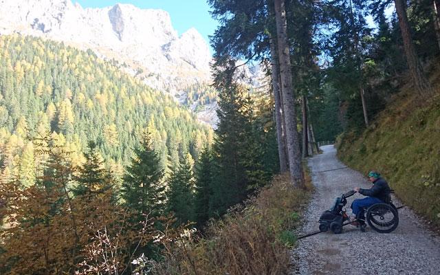 Wheelchair_Tours_Dolomiten_Rosengarten_Haniger_Schwaige_der_Wald_lichtet_sich