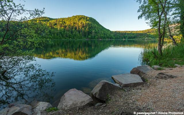 Wheelchair-Tours-Wheelchair-Hiking-Unterland-Suedtirol-AltoAdige-Montiggler-Lake-Adobe-Lizens