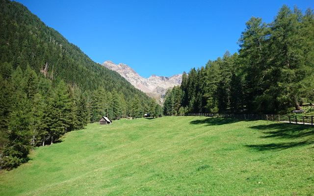 Tour in sedia a rotelle-Pustertal-Muehlbachtal-Wiesen
