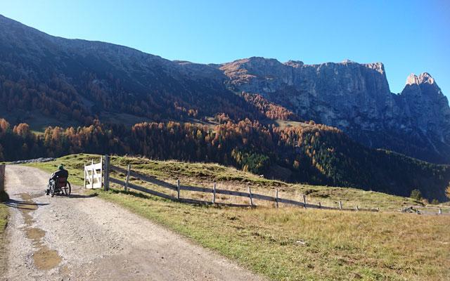 Weg kurz vor der Saltnerhütte