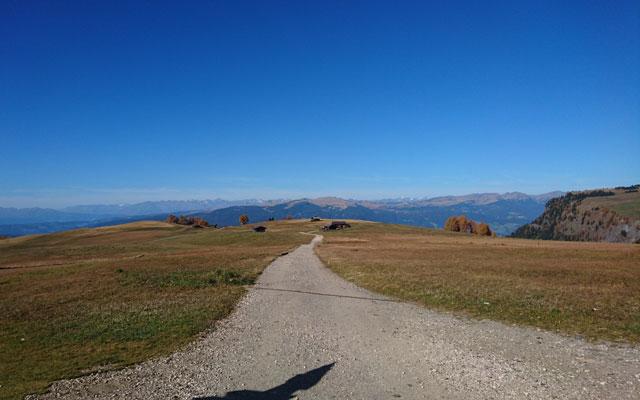 Weg auf dem Spitzbühl in Richtung Saltnerhütte