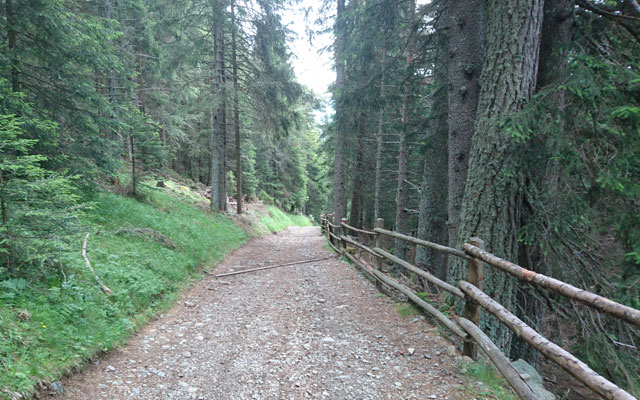 Path shortly before the turnoff towards Schalders