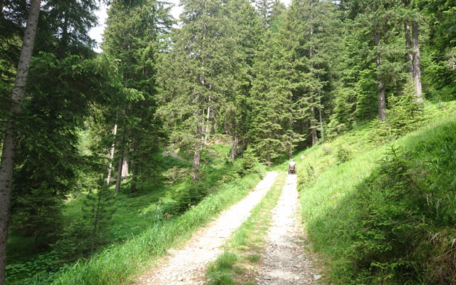 Behind the Steinwiesalm, after the steep ascent