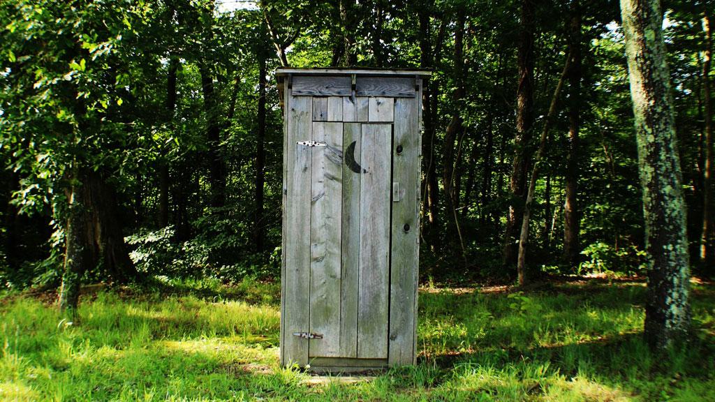 Toilette nella foresta