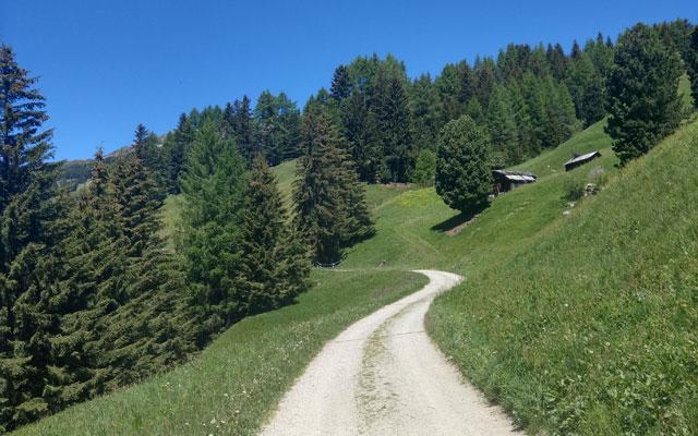 Zur Klausner Hütte: Durch die Latzfonser Almwiesen