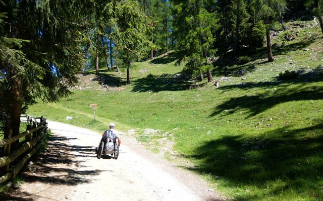 Zur Klausner Hütte: Anfang des Weges durch lichten Wald